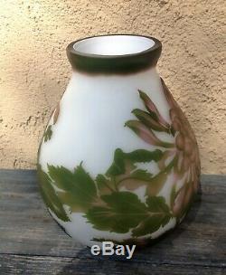 Rare Cameo Translucent Glass Art Nouveau Chrysanthemum Vase Signed Galle